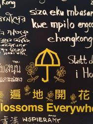 Photo by Jonathan Cortez. Folder from Umbrella Festival in Hong Kong.